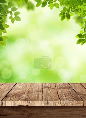 ID immagine B40212761