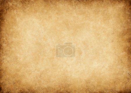 ID immagine B24493081