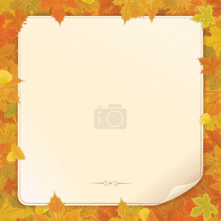 ID immagine B14411311