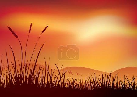 Colore, vettore, sfondo, oggetto, grafico, illustrazione - B22813908