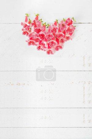 ID immagine B245181330