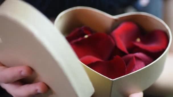 rosso regalo bella giorno presente san
