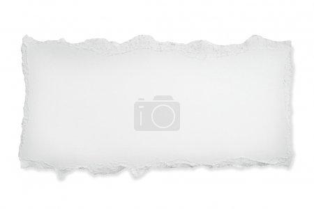 ID immagine B5533936