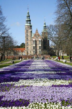 Giorno, Viaggio, Parco, All'aperto, Primavera, giardino - B5902756